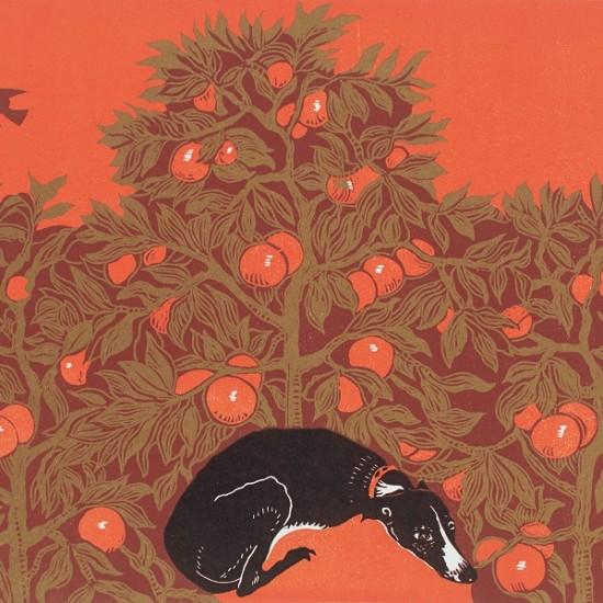gwen-scott-dog-under-sevilla-orange-tree