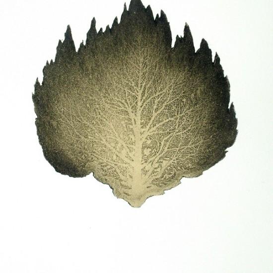 justin-mcshane-late-winter-2