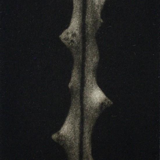 kyla-cresswell-inhabitant-1