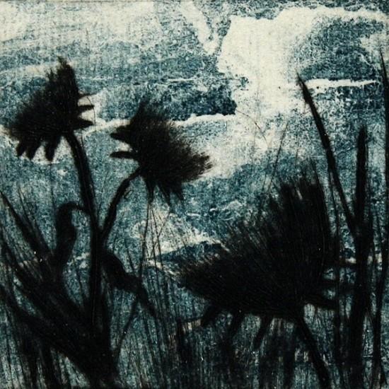 robyn-rayner-prickles