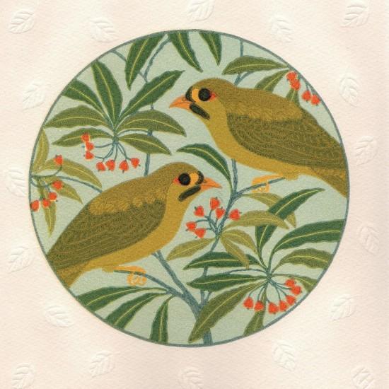 kate-hudson-bellbird-and-pittsoporum