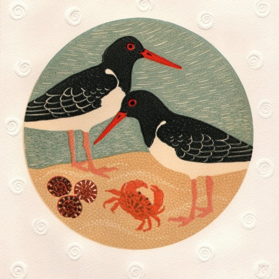 kate-hudson-pied-oyster-catchers