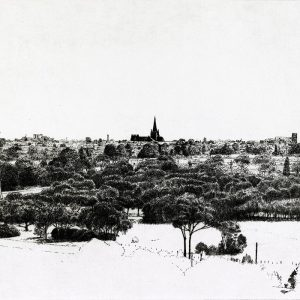 joel-wolter-View-of-St-Marys-Cathedral_state-1
