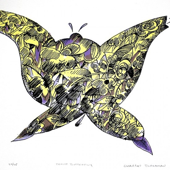 charles-blackman-teapot-butterfly