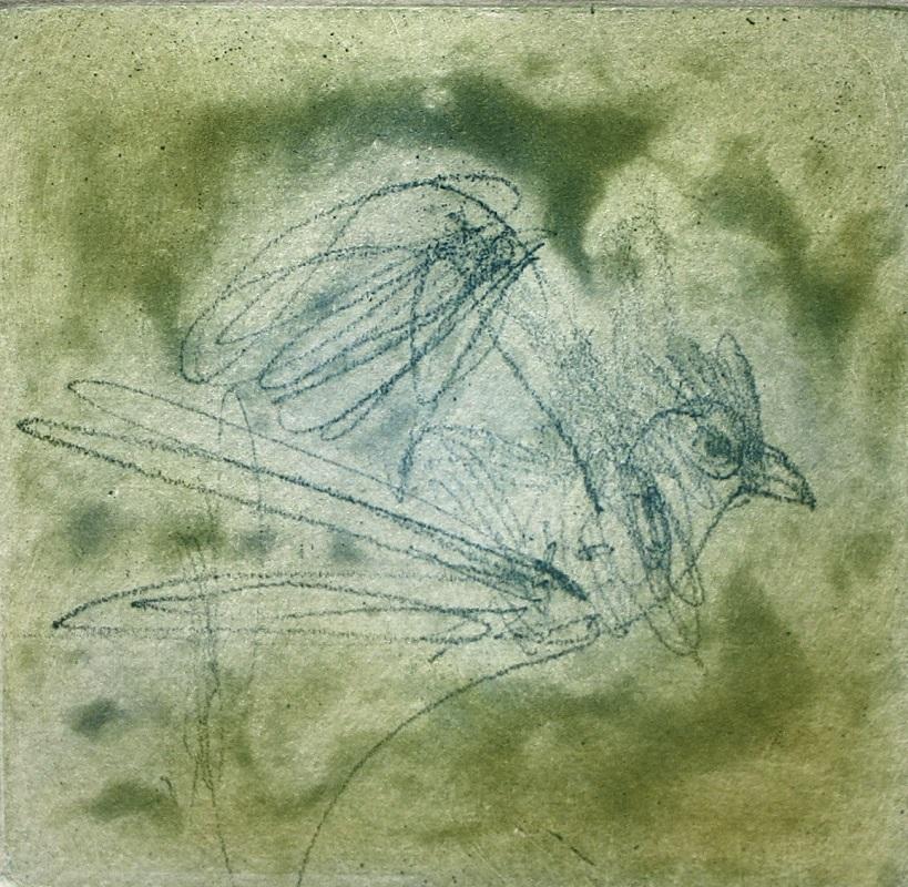john-olsen-passing-bird