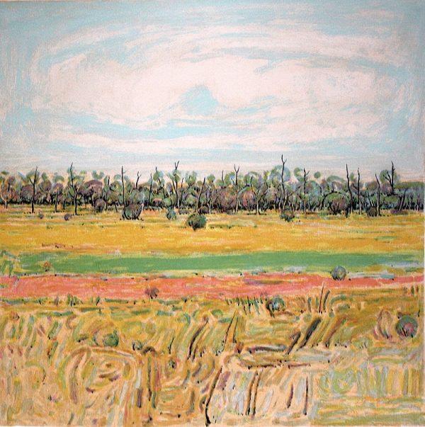clem-millward-the-long-paddock