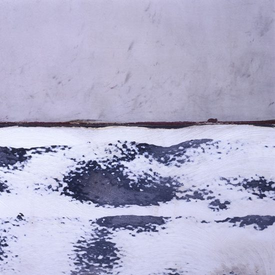 douglas-biklen-snow-plains