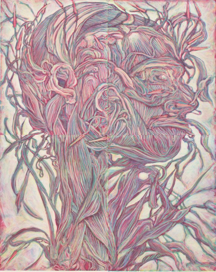 tony-ameneiro-Flowering-Head-Derecha