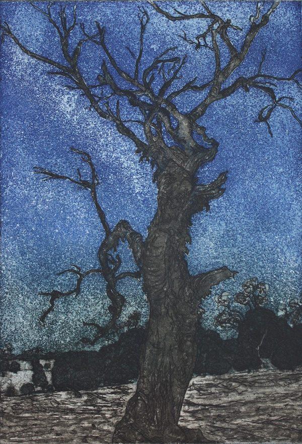 kevin-foley-starry-night-mia-mia