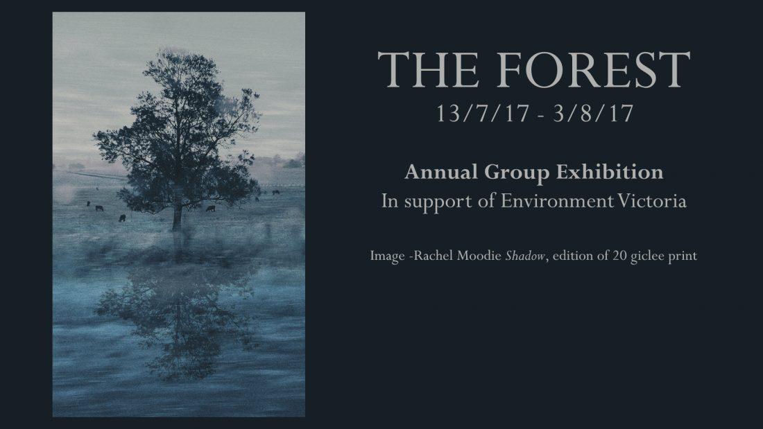 forest_groupshow_slider