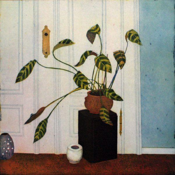 jutta-votteler-an-eine-zimmerpflanze