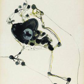 john-olsen-frog-and-fly