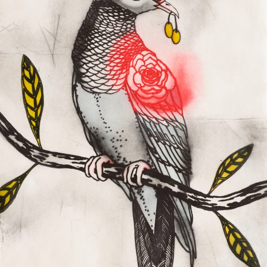 mandy-renard-be- my- homeward- dove