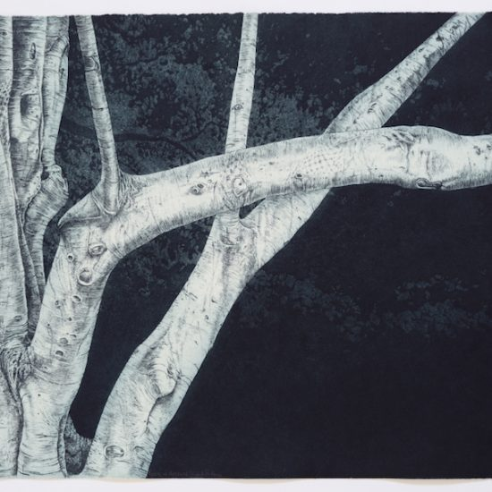 kasia-fabijanksa-rycerz-w-drzewie
