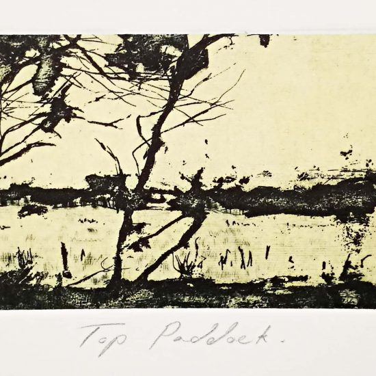 robyn-rayner-top-paddock