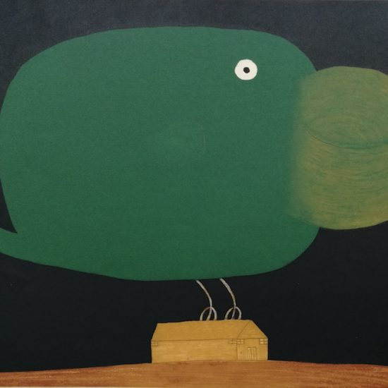dean-bowen-giant-toucan