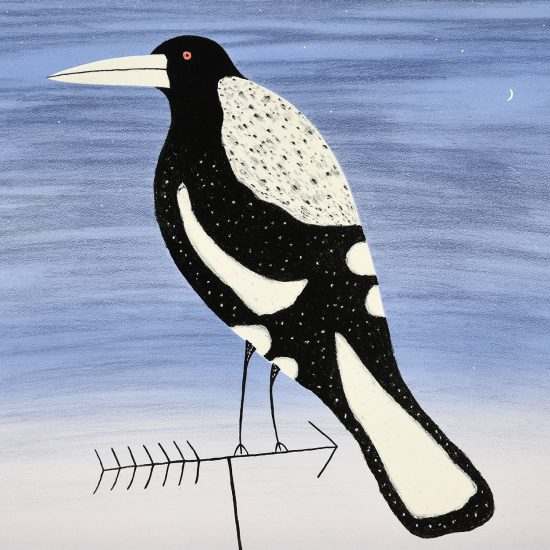 dean-bowen-magpie-on-tv-antenna