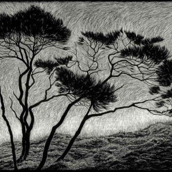 windblown-rachel-newling