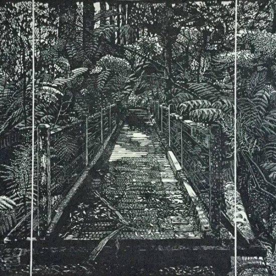 chris-lawry-Bridge-off-odonaghue-track