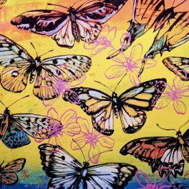 david-bromley-yellow-butterflies